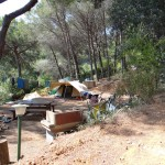 camping-bioelba002