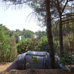 camping-bioelba003