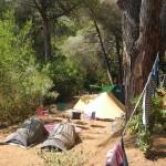 camping-bioelba027
