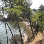 camping-bioelba035